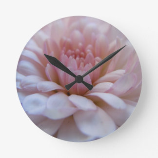 Soft Pink Chrysanthemum Round Wallclocks