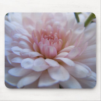Soft Pink Chrysanthemum Mousepad