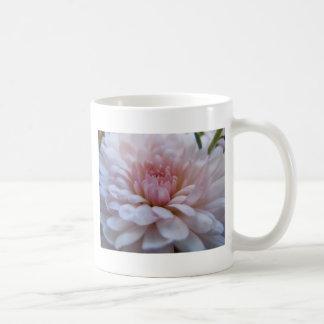 Soft Pink Chrysanthemum Coffee Mugs