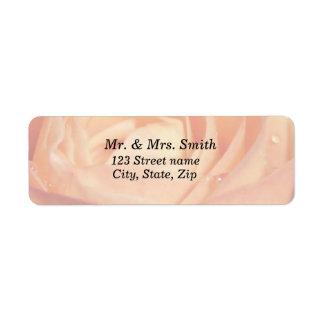 Soft Pink Rose Address Label