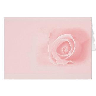 Soft pink rose card