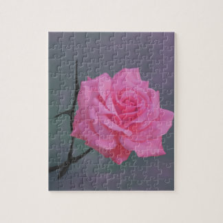 Soft Pink Rose Flower Jigsaw Puzzle