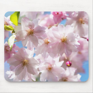 Soft Pink Spring Flower Mouse Pad