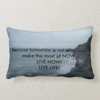 "Soft & Plush Pillow ""Live Life"" Live NOW!"