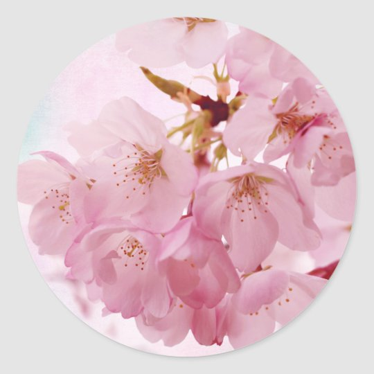 Soft Vintage Pink Cherry Blossoms Classic Round Sticker