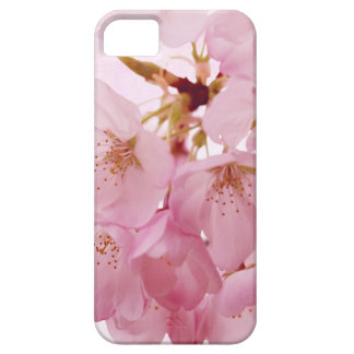 Soft Vintage Pink Cherry Blossoms iPhone 5 Cover