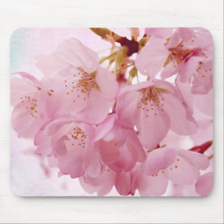 Soft Vintage Pink Cherry Blossoms Mousepad