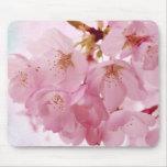 Soft Vintage Pink Cherry Blossoms Mousepad