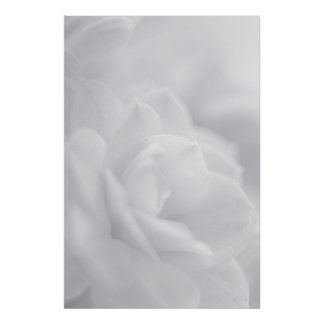 Soft white petals ... poster