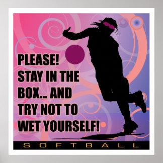 softball74 poster