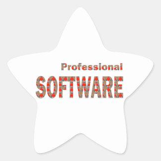 SOFTWARE Professional Engineer Internet App Virus Star Sticker