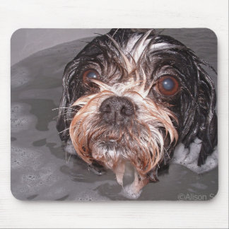 Soggy Doggy Mousepad