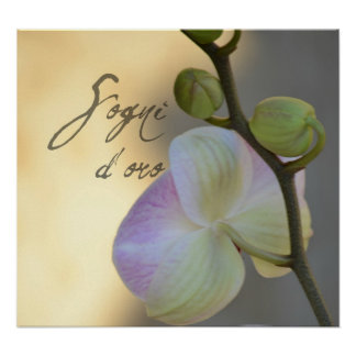 Sogni D'oro (sweet dreams) Orchid Print