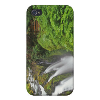 Sol Duc Falls in Olympic National Park in 2 Cases For iPhone 4