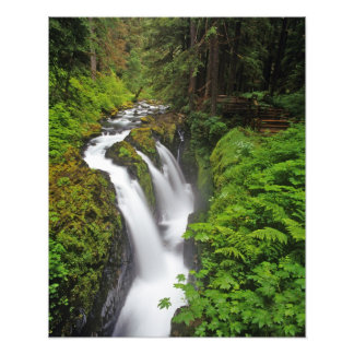 Sol Duc Falls in Olympic National Park in 2 Photographic Print