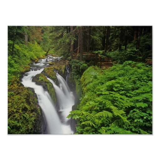 Sol Duc Falls in Olympic National Park in 2 Poster