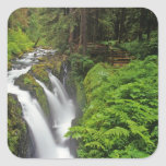 Sol Duc Falls in Olympic National Park in 2 Square Sticker