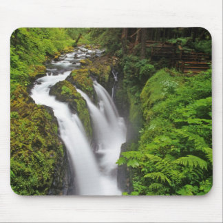 Sol Duc Falls in Olympic National Park in Mouse Mat
