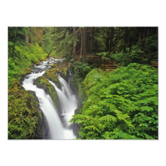 Sol Duc Falls in Olympic National Park in Photograph
