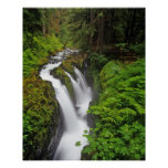 Sol Duc Falls in Olympic National Park in Poster