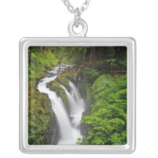 Sol Duc Falls in Olympic National Park in Silver Plated Necklace