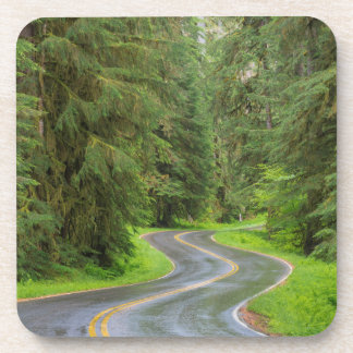 Sol Duc River Road through forest Drink Coasters