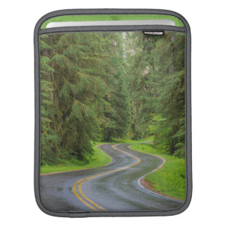Sol Duc River Road through forest iPad Sleeve