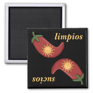 Sol y Chile Hot and Spicy Fun Dishwasher Square Magnet