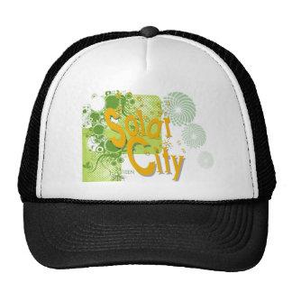 Solar City HAT