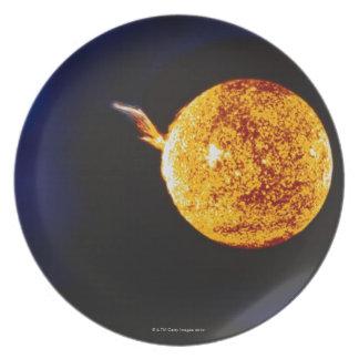 Solar Flare Plate