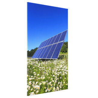 Solar Panels and green meadow Stretched Canvas Prints