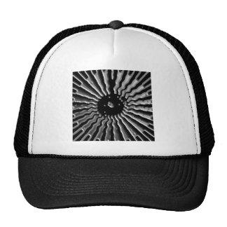 Solar Plexes - Silver Star Trucker Hat