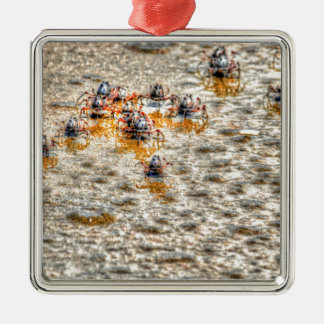 SOLDIER CRABS ON BEACH  AUSTRALIA ART EFFECTS CHRISTMAS ORNAMENT