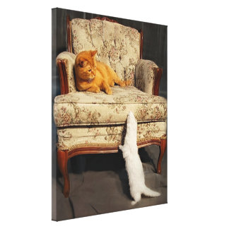 Soleil and the Ferret  - Stretched Canvas Print