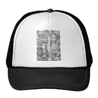 Solemn Passage abstract expressionism Mesh Hats
