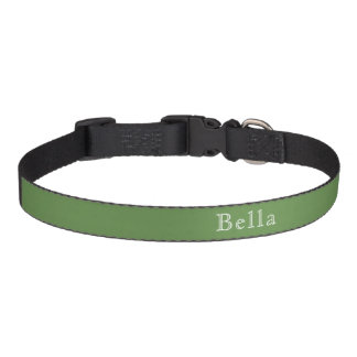 Solid Moss Green White Lettering Name Minimalist Pet Collar