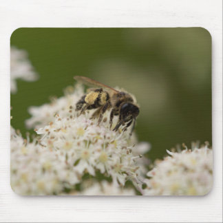 Solitary Bee Mouse Mat