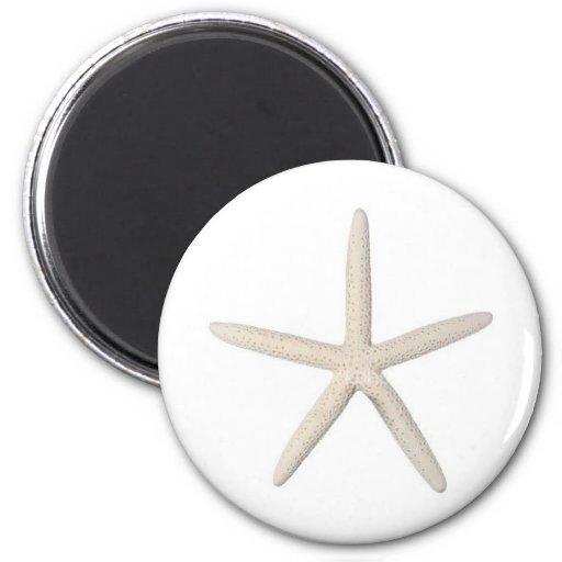Solitary Starfish Fridge Magnets