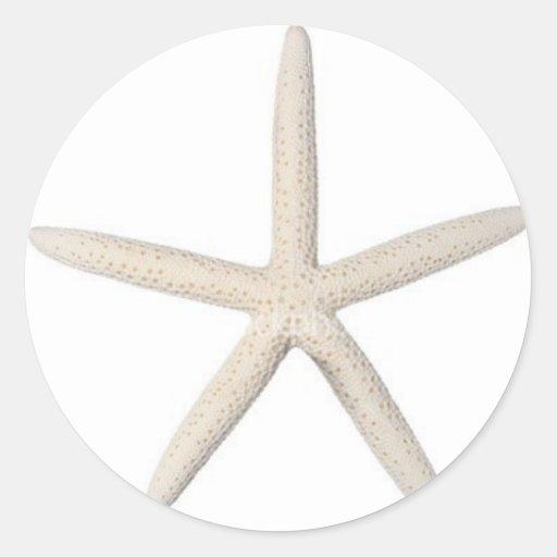 Solitary Starfish Stickers