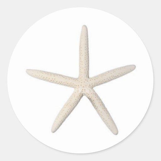 Solitary Starfish Round Stickers