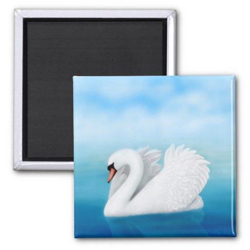 Solitary Swan Magnet