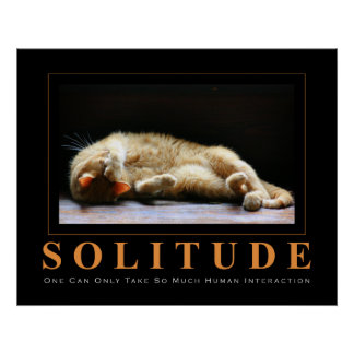 SOLITUDE Cat Photography Anti-Motivational Poster