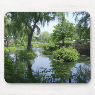 Solitude From The City Mouse Pad