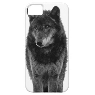 """Solitude"" iPhone 5 Case"