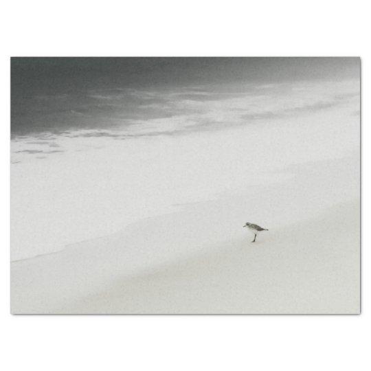 SOLO SANDPIPER Peaceful Grey Seashore Solitude Tissue Paper