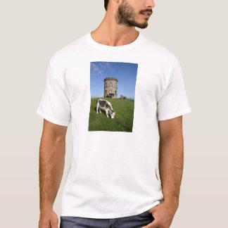 Solomon's Temple + cattle T-Shirt