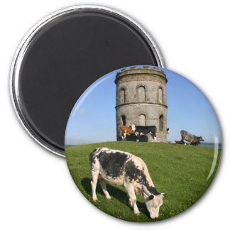 Solomon's Temple fridge magnet