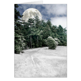 Solstice Full Moon Trail to the Woods Greeting Card