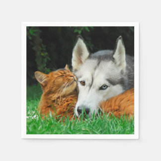 Somali Cat Siberian Husky Cute Friends Huddle Love Disposable Serviettes