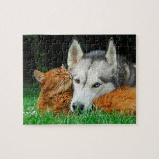 Somali Cat Siberian Husky Cute Friends Huddle Love Jigsaw Puzzle
